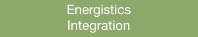 Energistics Integration