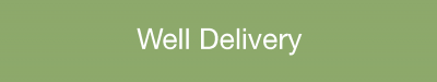 Well Delivery